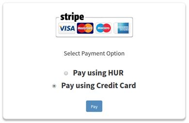 Stripe Pay